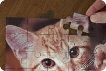 Personalised Printed Photo Jigsaws